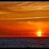 Newport Sunset Four
