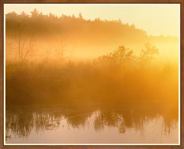 Morning Mists I