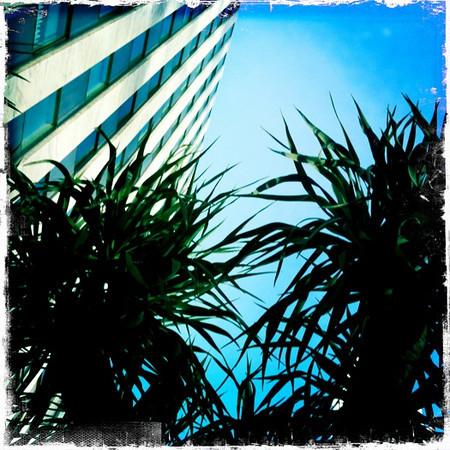 The standard hotel LA