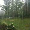 Ontario rain
