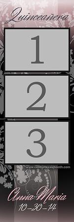 ELEGANT FLORAL 3pic strip