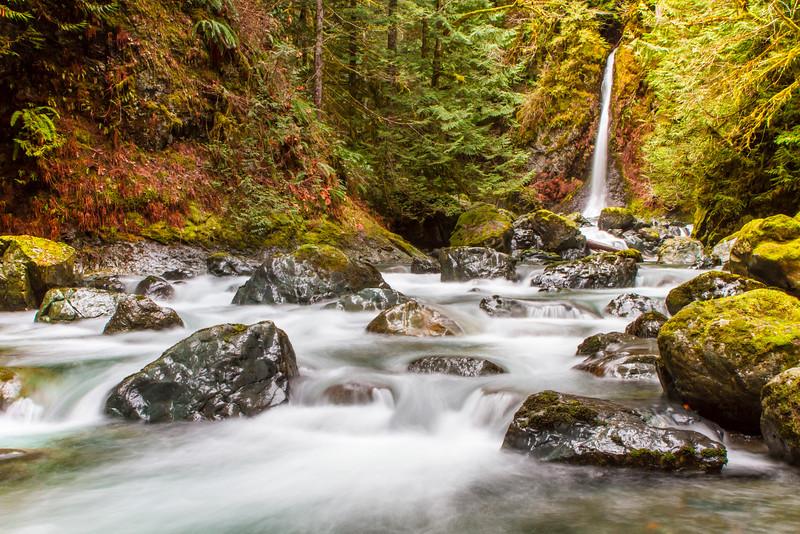 Rosewall Creek, Vancouver Island