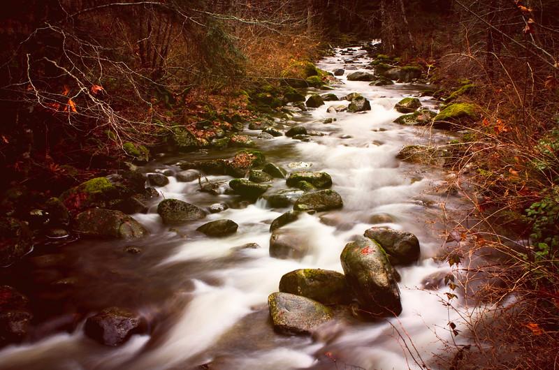Holland Creek, Ladysmith, Vancouver Island