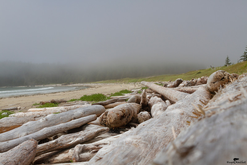 Guise Bay, Cape Scott Trail Vanouver Island