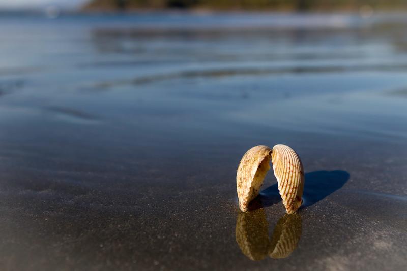Chesterman Beach, Tofino, Vancouver Island
