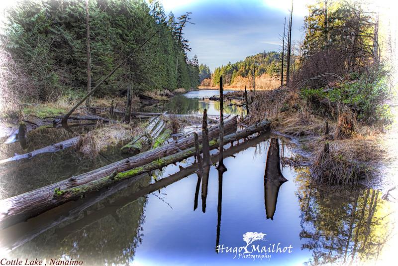Cottle Lake, Linley Park Nanaimo