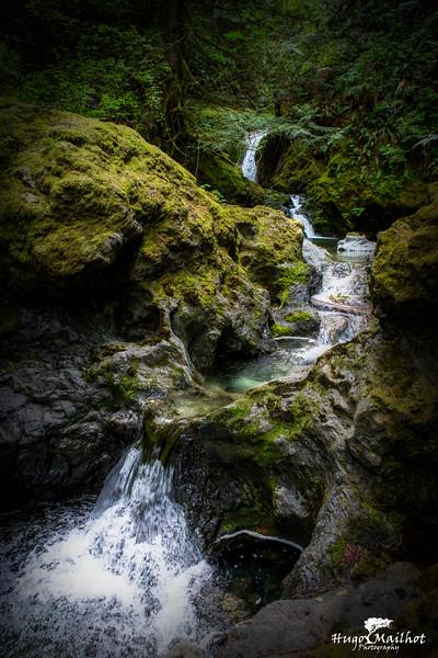 Nile Creek