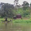 130415_Nicaragua Jungle_8206 as Smart Object-1