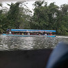 120415_Nicaragua Jungle_8660 as Smart Object-1