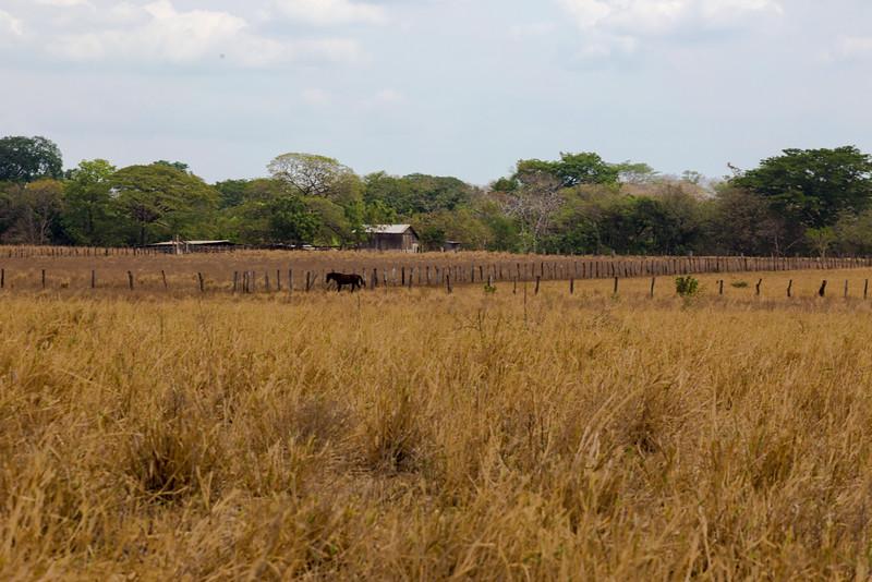 150415_Nicaragua last day_8825