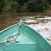 130415_Nicaragua Jungle_8308 as Smart Object-1