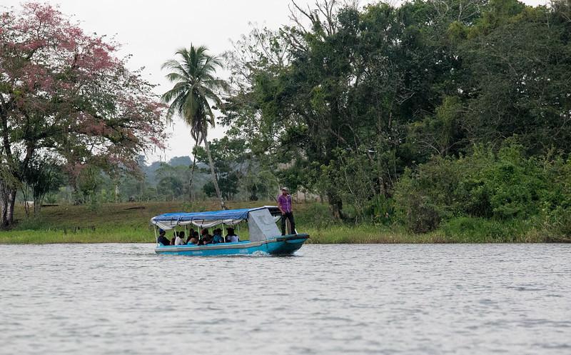 120415_Nicaragua Jungle_8653 as Smart Object-1