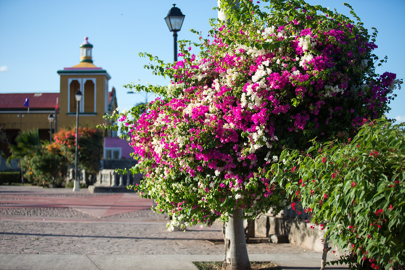 070415_Nicaragua Granada_6993 as Smart Object-1