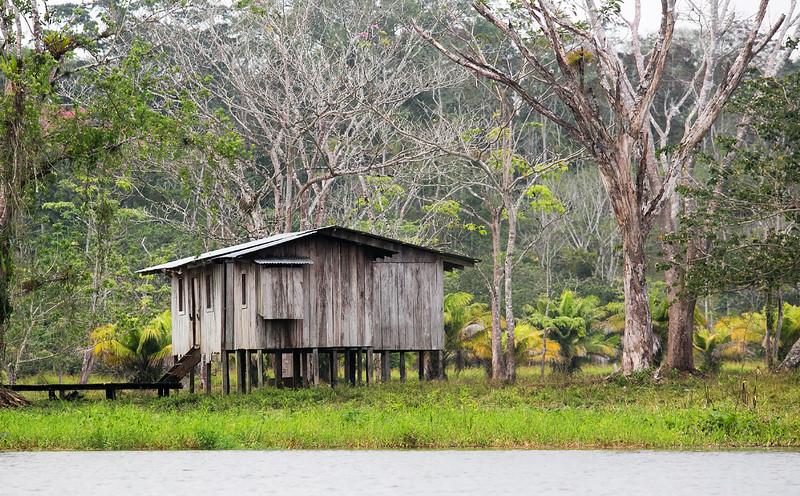 120415_Nicaragua Jungle_8651 as Smart Object-1