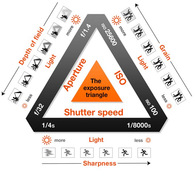 49231511 - exposure explained infographic illustration