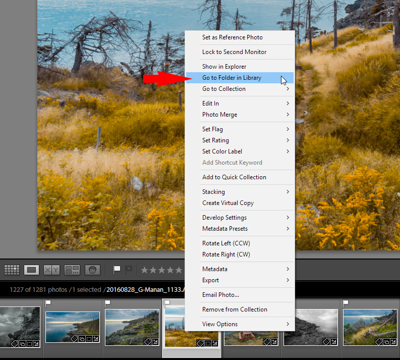 My 5 Favorite Tips to Navigate Lightroom Like a Boss 4