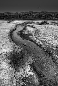 The Salt Flats