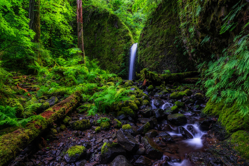 Mossy Grotto Falls