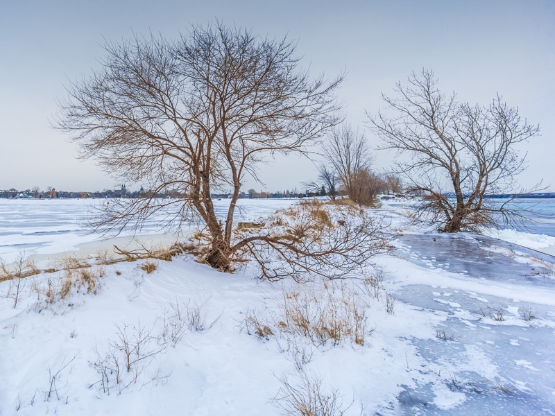 How to Edit Snowy Landscapes - Reviving Overcast Winter Scenes