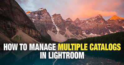 How to merge multiple catalogs in Lightroom