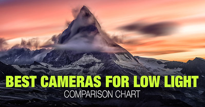 Top cameras with the best high ISO performance