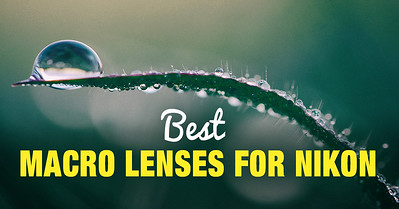 Best Macro Lens for Nikon Full Frame and APS-C Cameras