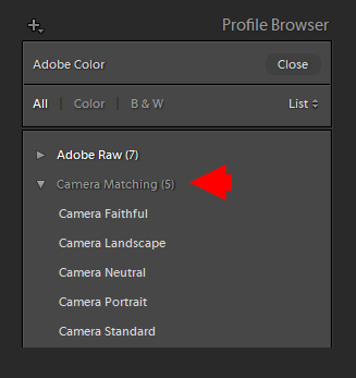 Demystifying Lightroom Profiles: In-Depth Guide (Free Profiles) 6