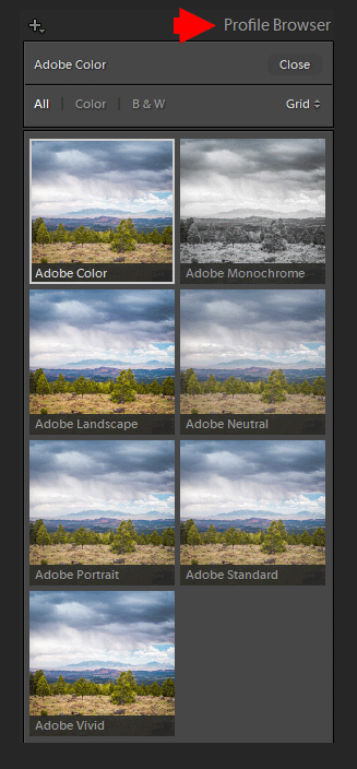 Demystifying Lightroom Profiles: In-Depth Guide (Free Profiles) 3
