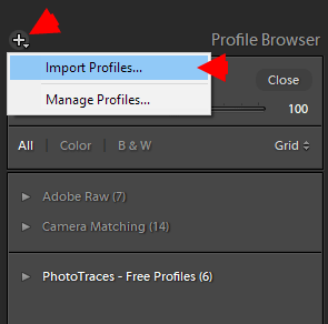 Demystifying Lightroom Profiles: In-Depth Guide (Free Profiles) 9