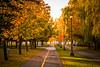 Autumn (8, 17, 33)