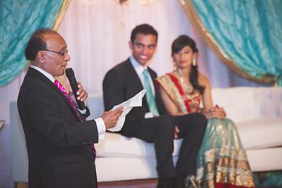 Alex + Priya Engagement Party-250