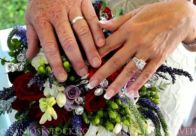 JALEH & CRAIG'S WEDDING