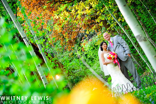 MJ Newlyweds (Log Haven)