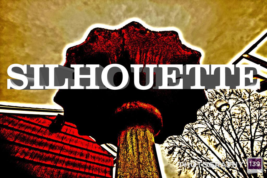 WEEK 78 - SILHOUETTE