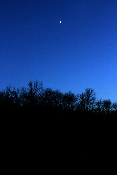 WEEK 60 - LANDSCAPE - DAWN KRAUSE 3