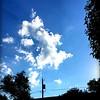 WEEK 98 - SKY - CATHIE RALEY