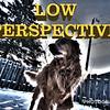 WEEK 120 - LOW PERSPECTIVE