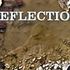 WEEK 110 - REFLECTION