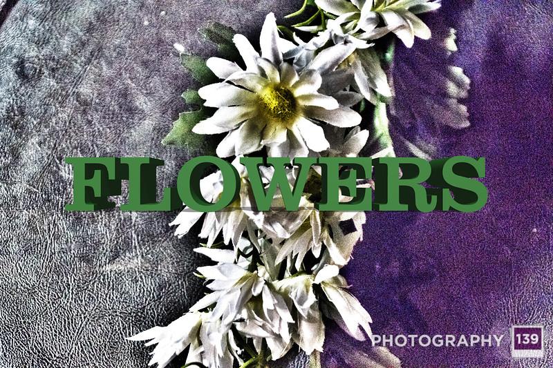WEEK 118 - FLOWERS