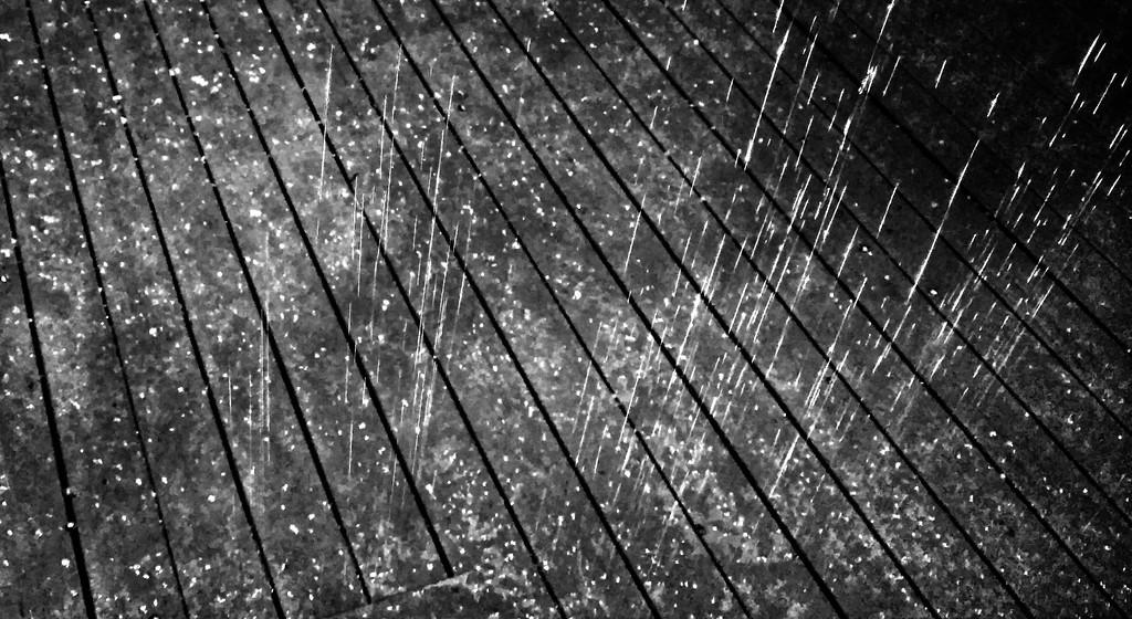 WEEK 117 - WATER - BECKY PARMELEE