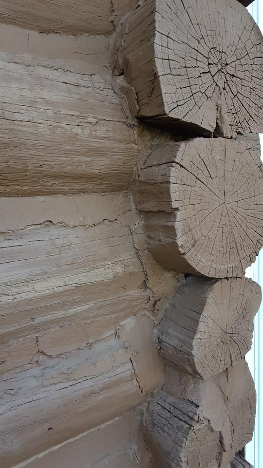 WEEK 137 - ARCHITECTURE - TAMARA PETERSON
