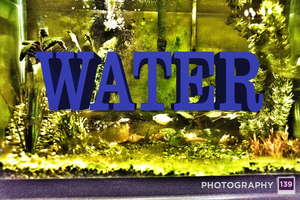 WEEK 117 - WATER