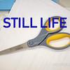 WEEK 184 - STILL LIFE