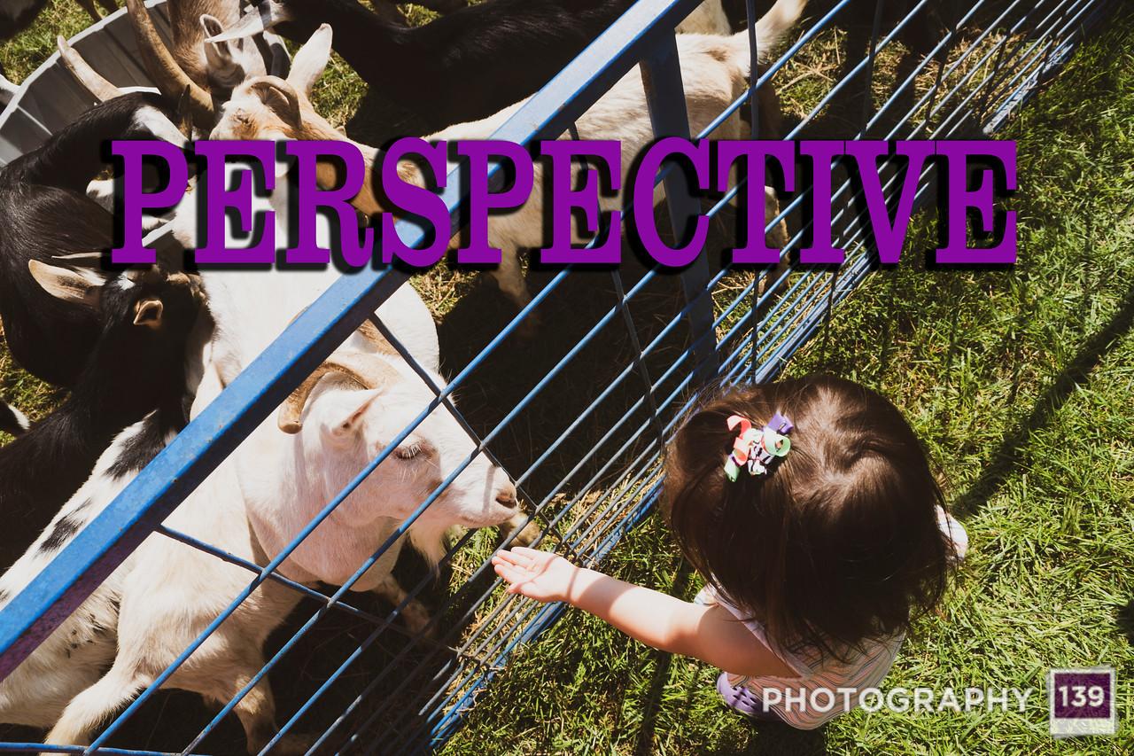 WEEK 157 - PERSPECTIVE