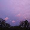 WEEK 193 - BLUE - SHANNON BARDOLE-FOLEY