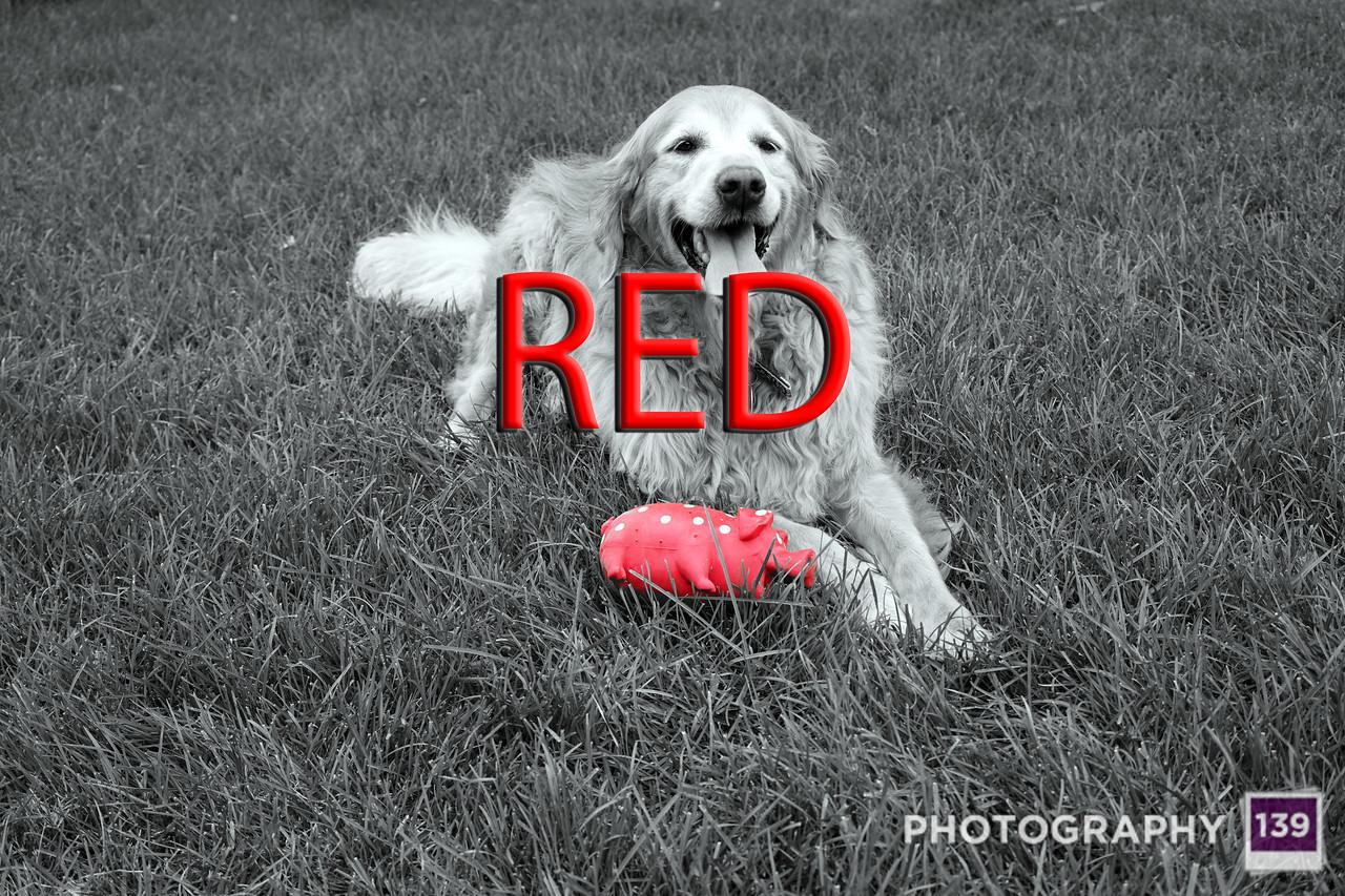 WEEK 206 - RED