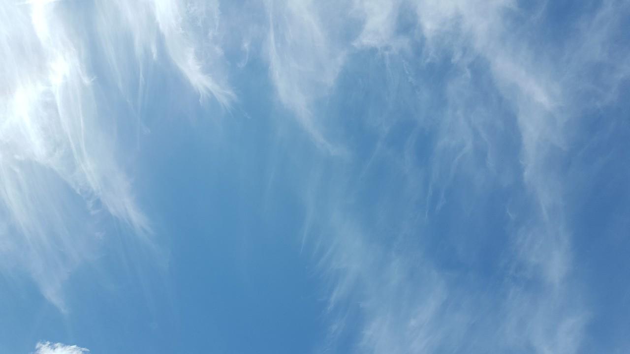 WEEK 193 - BLUE - TAMARA PETERSON