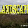 WEEK 165 - LANDSCAPE