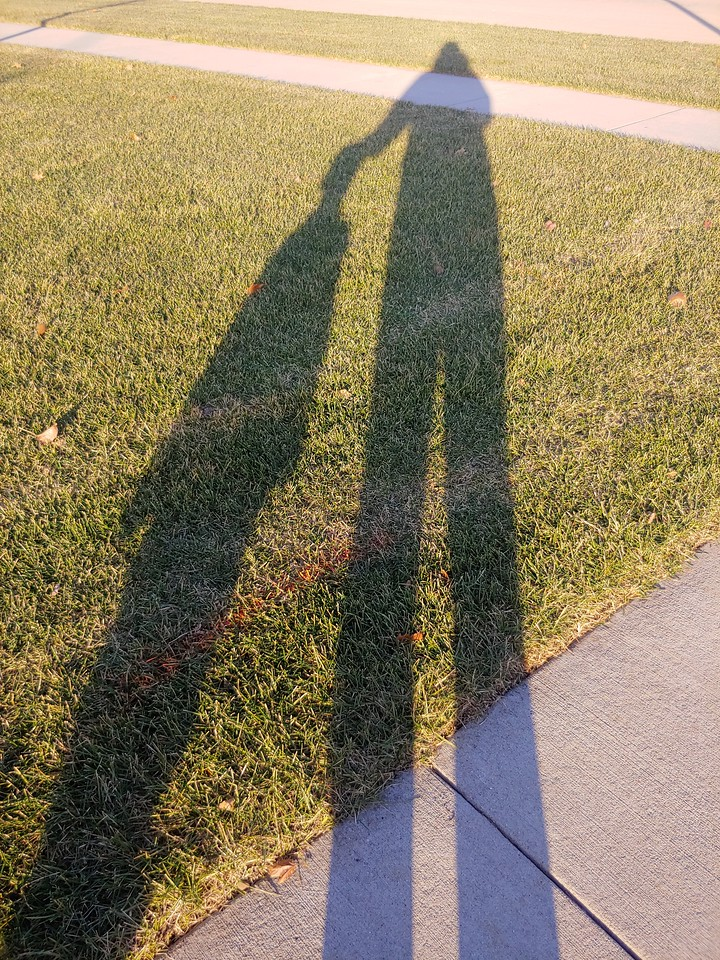 WEEK 219 - SHADOW - MICHELLE HAUPT
