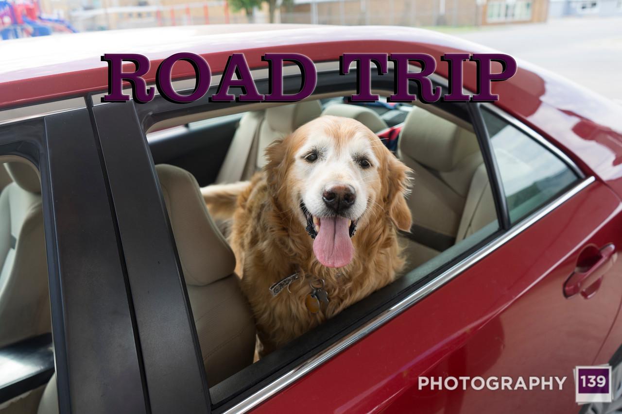 WEEK 249 - ROAD TRIP